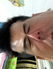 hamster 50 y.o. from Singapore