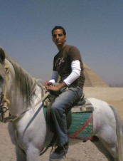 tiger 34 y.o. from Egypt